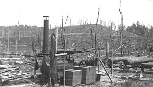 Sawmilling near Puketitiri, Hawke's Bay, mid-1920s.