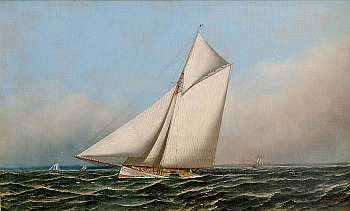The sloop Mayflower, defender during the sixth Americas Cup regatta in 1886. Painting: Antonio Jacobsen, public domain, via Wikimedia.