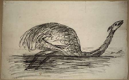 A conjectural picture of a Moa drowning in a swamp by early New Zealand settler Walter Mantell - son of the man who first discovered the Iguanadon, in England. Mantell, Walter Baldock Durrant (Hon), 1820-1895. [Mantell, Walter Baldock Durrant] 1820-1895 :Moa in a swamp. [1875-1900]. Ref: C-107-002. Alexander Turnbull Library, Wellington, New Zealand.  From the collection of the New Zealand National Library, http://natlib.govt.nz/records/22299292