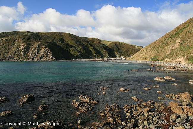 Makara beach township from across the bay, winter 2014.