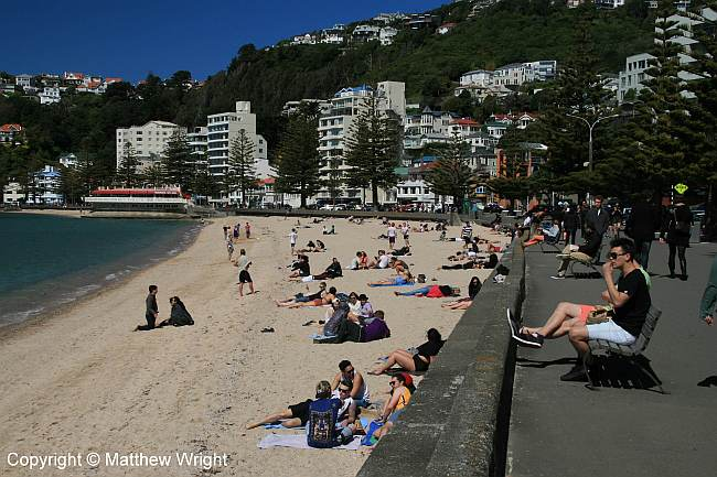 Oriental Bay beach, Wellington, New Zealand.