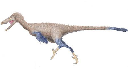 Reconstruction of Troodon by Iain James Reed. Via Wikipedia, Creative Commons attribution share-alike 3.0 unported license.