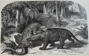 An 1863 reconstruction of Iguanodon vs Megalosaurus - complete with Iguanodon's thumb-bone wrongly placed as a nose spike. Classic Victorian-age thinking. Public domain, via Wikipedia.