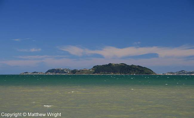 Miramar Peninsula, Port Nicholson, New Zealand.