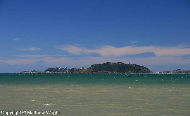 Miramar Peninsula, Port Nicholson, New Zealand.