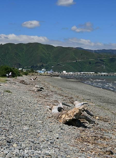 Petone beach, Wellington district.