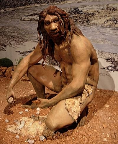 Homo heidelbergensis, thought to be the ancestor of H. sapiens, Neanderthals and Denisovans. Photo: Jose Luis Martinez Alvarez, Creative Commons 2.0, via Wikimedia Commons.
