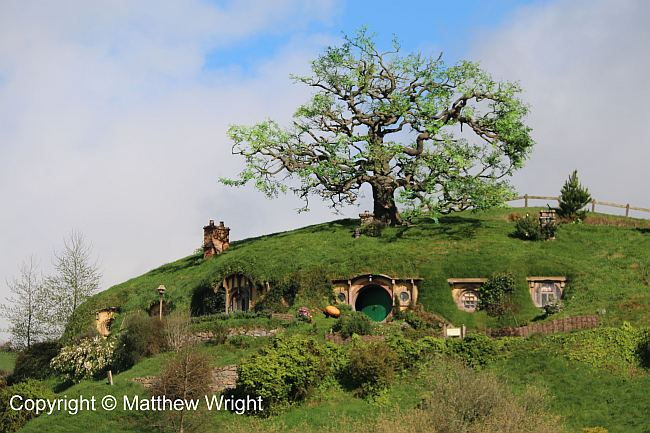 The Hill and Bag End, complete with a chintzy artificial oak tree.