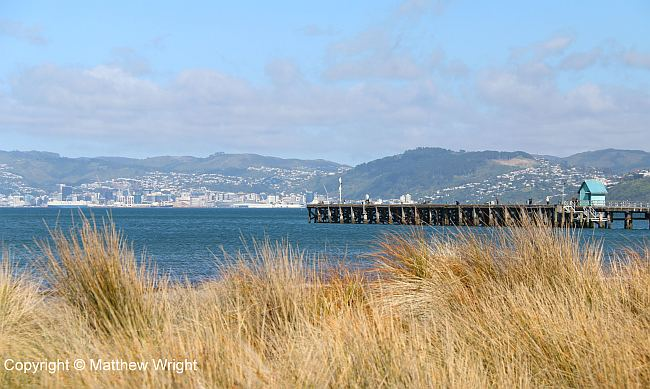 Wharf at Petone, Wellington, New Zealand.