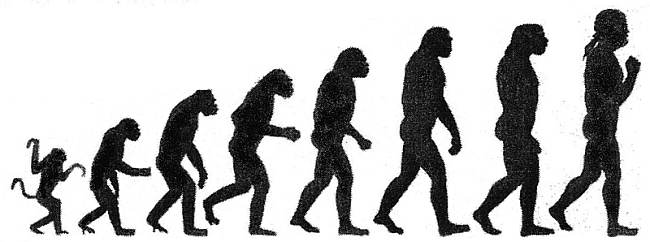Human evolution as 'progress', public domain, via Wikipedia.